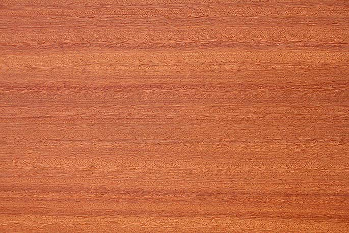 Tobacco Wenge Quartered Earthsmart Veneer By Oakwood